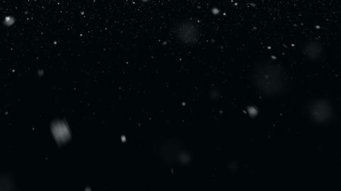 White Snow Animation