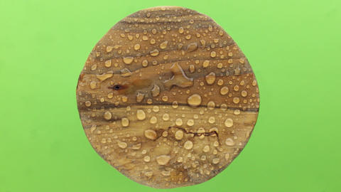 Wind blows on a round wooden board in drops of rainwater. Isolated ビデオ