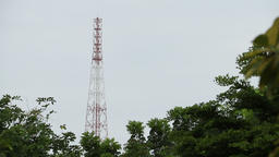 Telephone pole Live Action