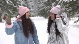 Two girlfriends in winter clothes are walking in the woods in the winter having Archivo