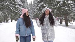 Two girlfriends walk in the woods in winter Footage
