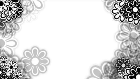4k Wild daisy flower petals,spring plant bloom,romance love wedding background Footage