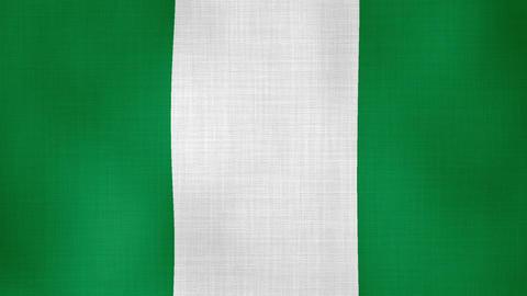 Flag Nigeria 01 ライブ動画