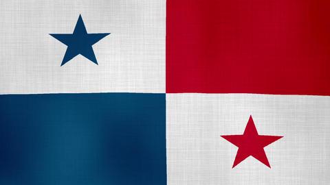 Flag Panama 01 ライブ動画