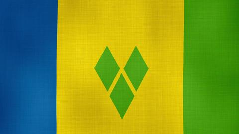 Flag Saint Vincent and the Grenadines 02 ライブ動画