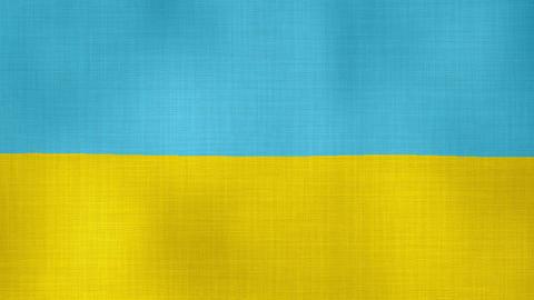 Flag Ukraine 02 ライブ動画