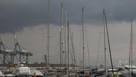 Marina masts on the wind Footage