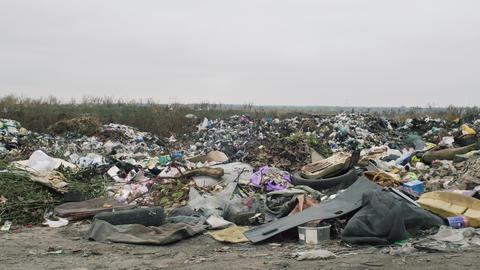 The Environment Garbage Dump In Ukraine ビデオ