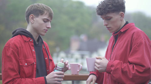 Young guy pours tea from a thermos in a cup to a friend Friends spend time Live Action