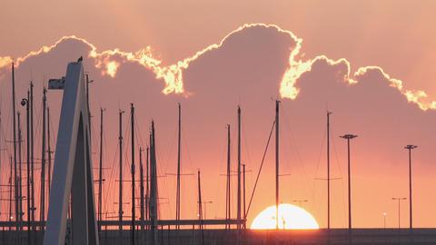 Marina sailing masts at sunrise with sun and clouds ビデオ