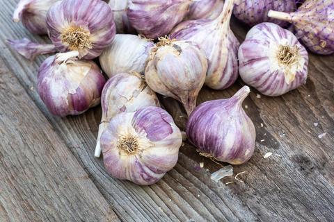Garlic on wooden vintage background フォト