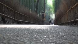 4K Path of Bamboo/Bamboo Grove Road in Arashiyama Walk Kyoto Japan 竹林の小 Footage