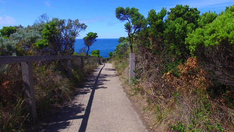 1008023 DJI 0249 Great Ocean Road Path stock footage