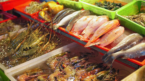 Fresh sea fish, shrimps, spiny lobsters, shellfish on the counter at seafood Live Action
