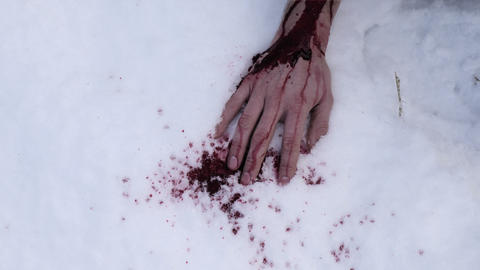 Hand covered in blood on snow ビデオ