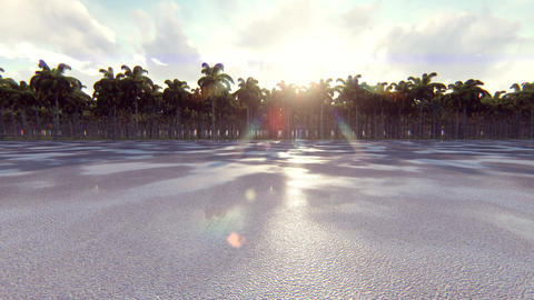 The open road, driving on long straight road in tropics Animation