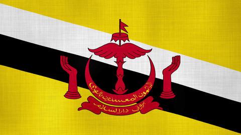 Brunei 01 ビデオ