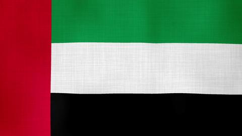 United Arab Emirates ビデオ