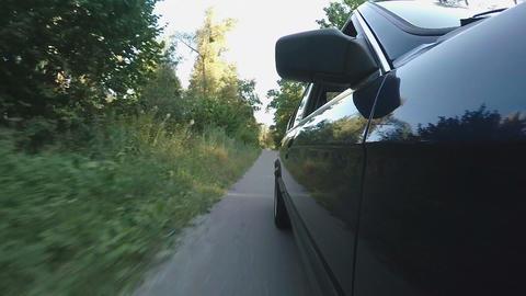 Auto driving asphalt road through forest, reaching destination point, trip Live Action