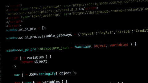 Website Programming Live Action