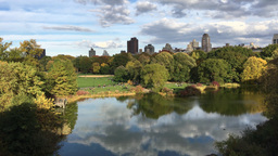 Autumn in Central Park, New York City Footage