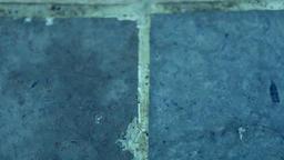 Water Drops On the Floor 1 ビデオ