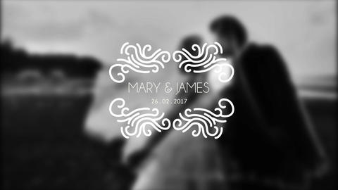 Premium Wedding Titles After Effect Template V17 After Effects Template