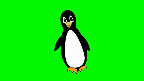 penguin walking on green screen, cute mascot, bird cartoon isolated, beautiful Videos animados