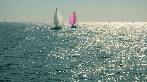 Yacht sailing on opened sea. In the open sea in sunny weather, two sailing Live Action