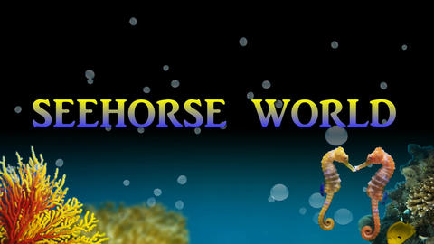 SEEHORSE WORLD DVD MENU BACKGROUND CG動画素材