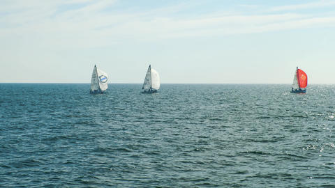 Sailboats at sea with horizon Footage