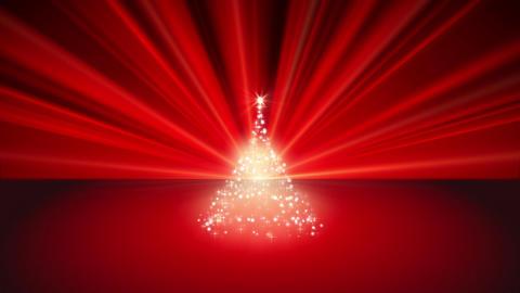 Sparkling Christmas Tree Animation
