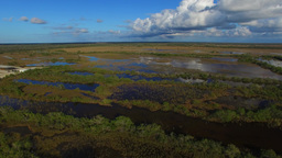 Panoramic aerial view of Everglades swamp with water reflections Footage