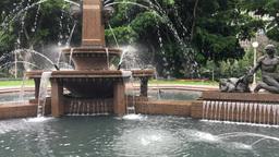 Sydney Archibald Fountain in Hyde Park Footage