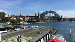 Sydney Harbour from Circular Quay Footage
