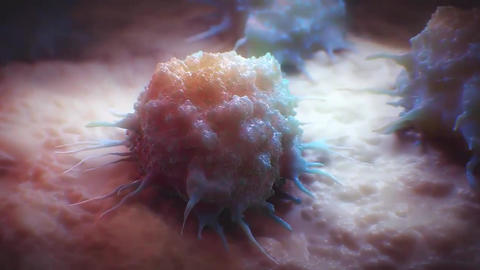 human body cancer cell Live Action