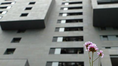 Sustainable city. Slow Motion ビデオ
