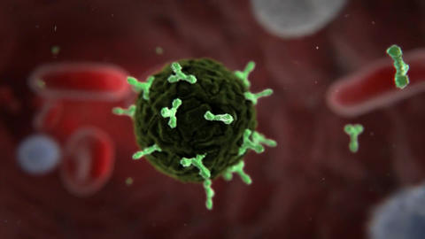 3d animation of glowing Virus Cells, Viruses, Virus Cells under microscope Live Action