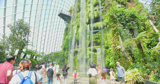 Cloud Forest Dome Gardens Footage