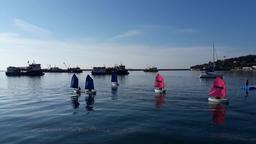 sailboats race Footage