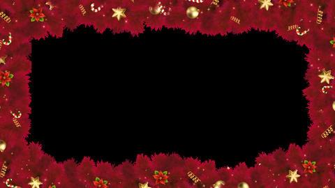 Red Frame Alpha Animation