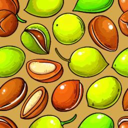 Argan nuts vector pattern-01 ベクター