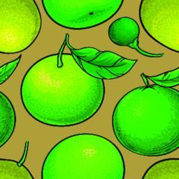 green mandarin fruit vector pattern on white background ベクター