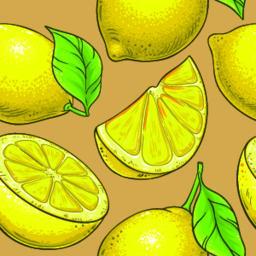 lemon fruit vector pattern ベクター