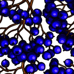 black rowan berries vector pattern ベクター