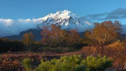 Stunning volcanic landscape, view of rocky cone volcano, yellow-orange forest ビデオ