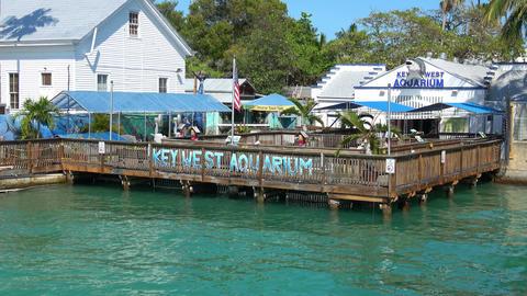 Key West Aquarium on a sunny day Footage