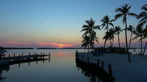 Romantic pier in South Florida - in the evening Live Action