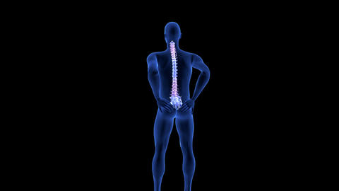 Spine Pain. Blue Human Anatomy Body 3D scan render on black background Footage