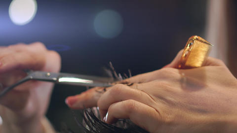 Hairdresser cutting hair with professional scissors and comb in hairdressing Live Action